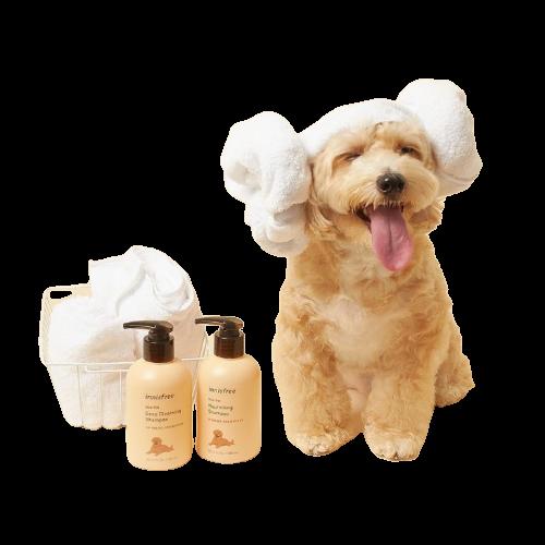 wholesale-pet-shampoo