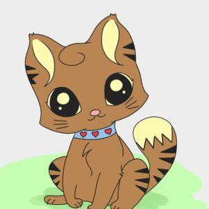 Cat Collar & toys