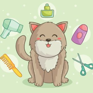 Buy Best Cat Grooming Products