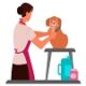 Basic-grooming-service-for-pets
